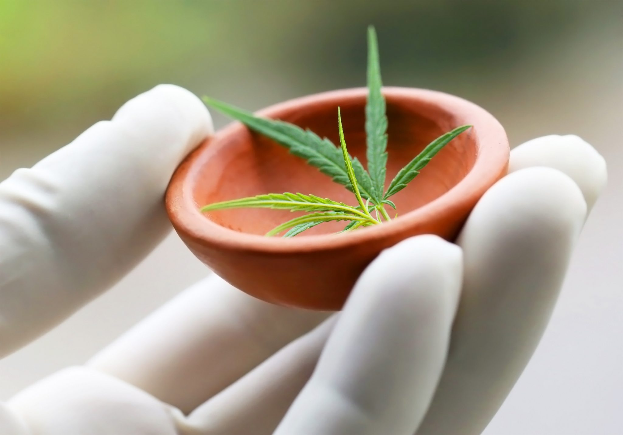 Academy of Sciences recommends rescheduling cannabis as medicine