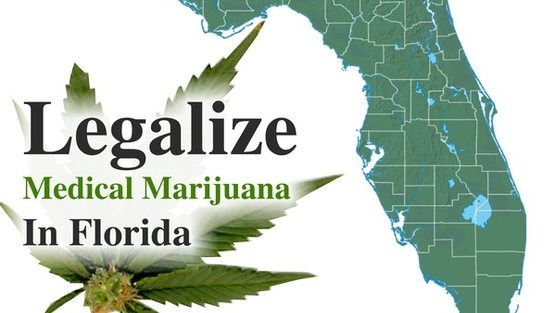 the reasons why i support the legalization of medical marijuana